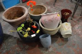 Assorted Plant Pots and Planters