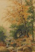 A.E. Boler (fl.1904). Stream before trees, watercolour, signed, 51cm x 35cm.