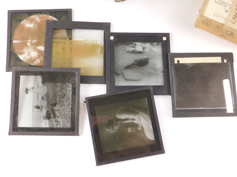 A quantity of Victorian and later magic lantern slides, to include portraits, early 20thC of Sussex, - Image 3 of 3