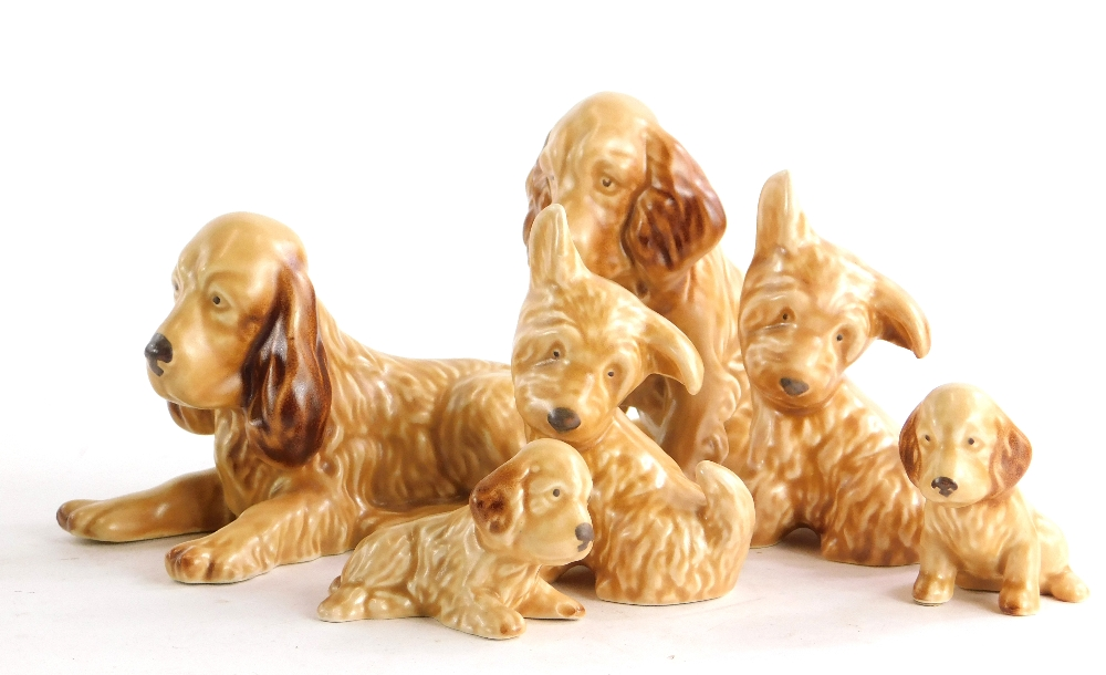 A collection of six brown Sylvac dogs, Spaniels and Terriers.