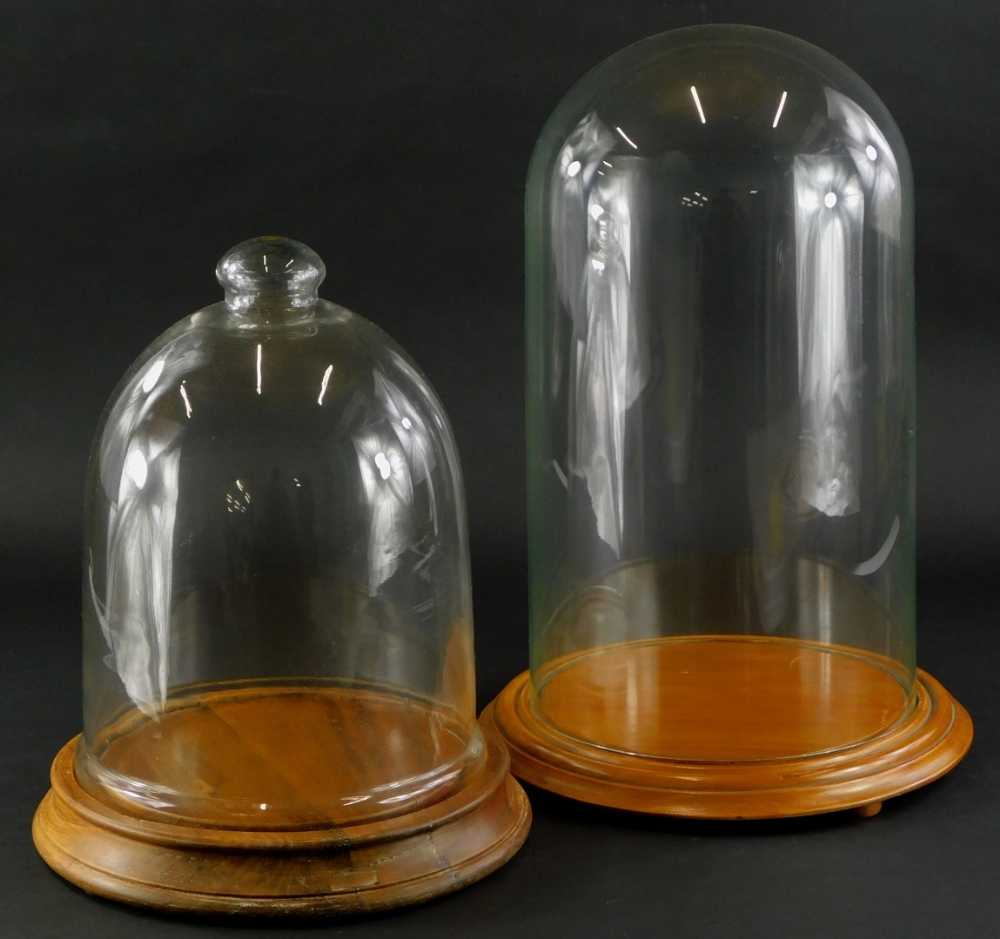 A glass dome, on turned hardwood base, 46cm high overall, and another dome on turned elm base, 34cm