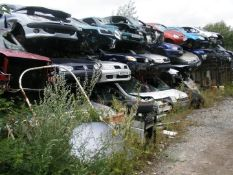 The Residual Scrap Vehicles on site together with other scrap hidden in the undergrowth. To include