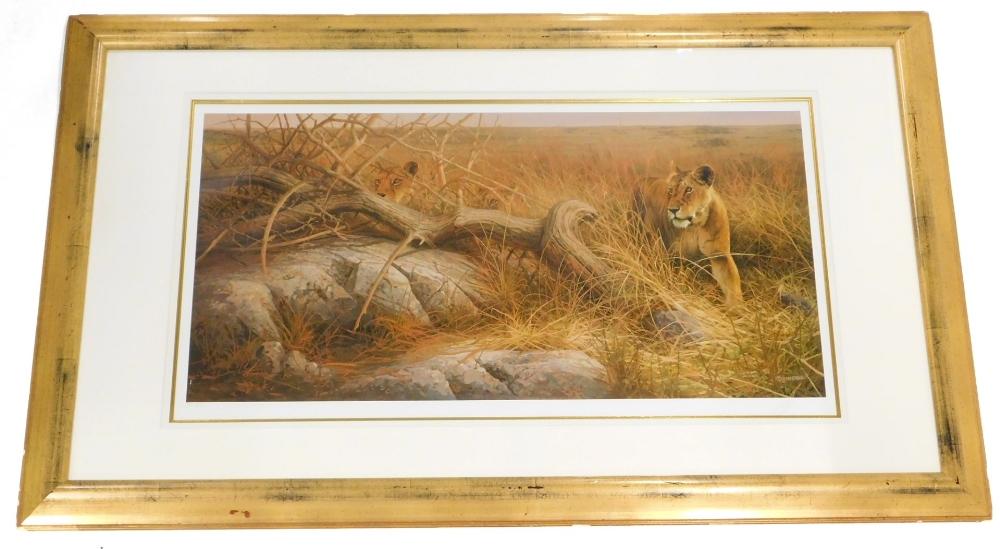After V. Heerde. Lionesses, artist signed limited edition print, no. 389 of 395, 44cm x 86cm.