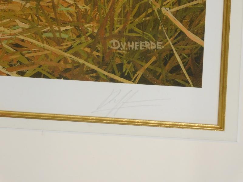 After V. Heerde. Lionesses, artist signed limited edition print, no. 389 of 395, 44cm x 86cm. - Image 2 of 2