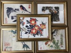 Collection of five framed Chinese signed watercolours to include birds, flowers and fish, approx