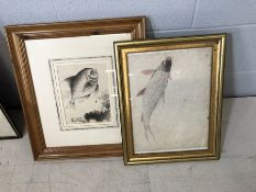 Two framed Chinese pictures depicting fish, the largest approx 47cm x 52cm