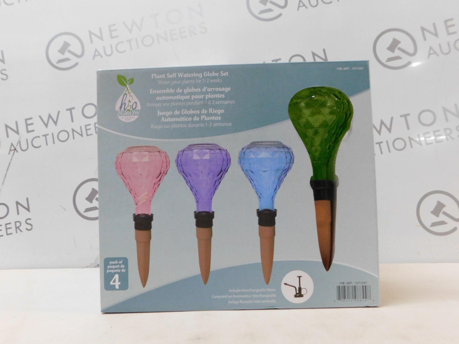 1 BOXED 2GROW EVERGREEN GARDEN PLANT SELF WATERING GLOBE SET RRP £29