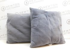 1 SET OF 2 ARLE HOME FASHIONS PILLOWS RRP £19
