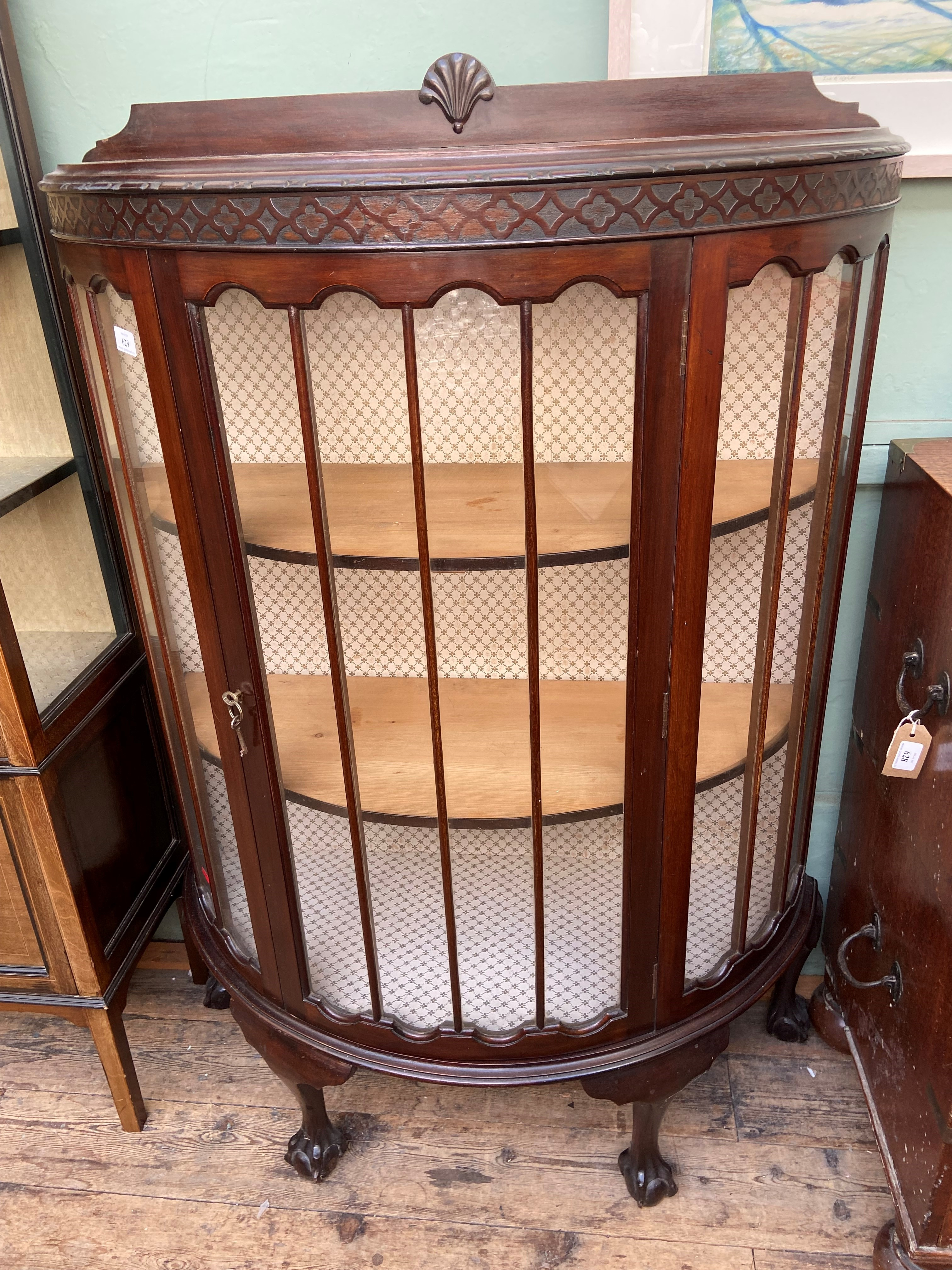 Dark mahogany bow fronted 2 shelf display cabinet on ball and claw feet