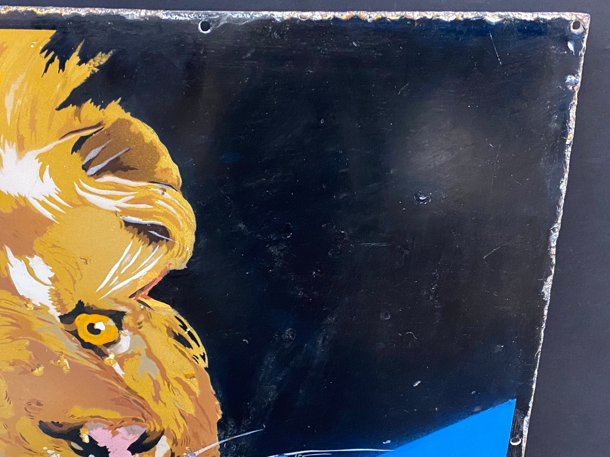 A Royal 'Ediswan' pictorial enamel sign depicting a lion's head, with a bulb in his mouth, restored, - Image 3 of 7
