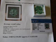 IGL&I certified - Natural Brazilian Emeralds - 7.25 carats - 61 pieces - Average retail value £4,