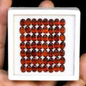 IGL&I Certified - Natural Hessonite Garnets - Huge 51.40 carats - 56 Pieces - Average retail