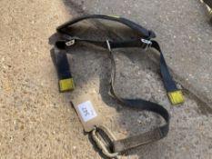 2016 Cabcare Restraint Belt