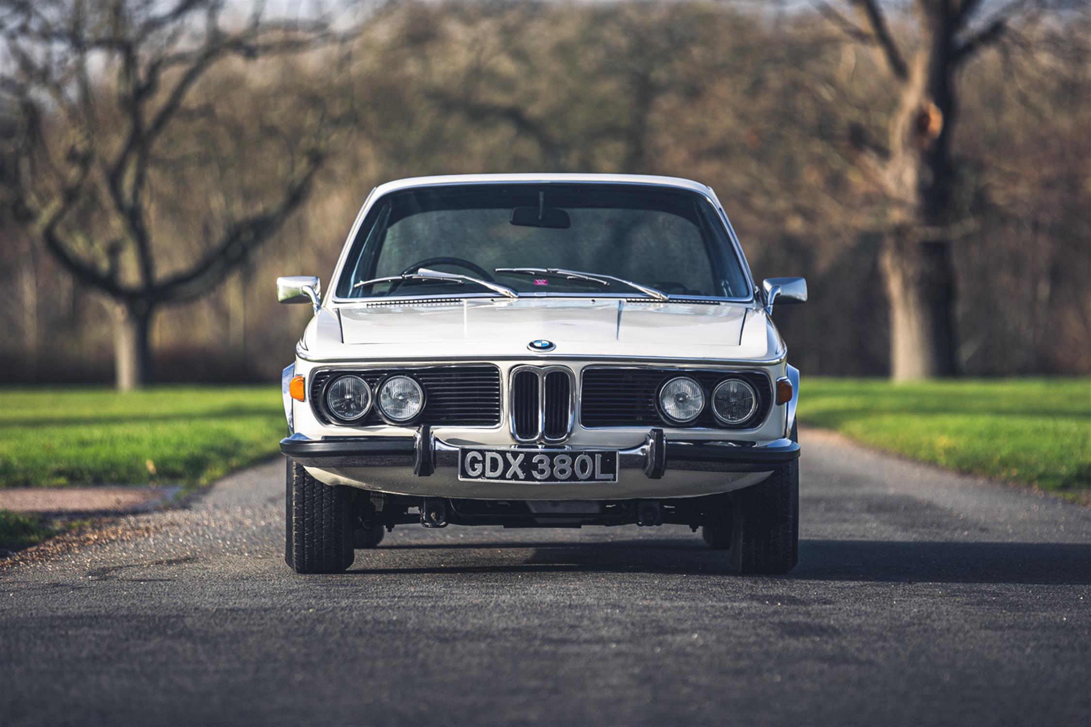 1973 BMW 3.0 CSL - Image 6 of 10