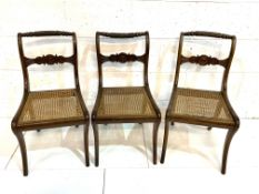 Three Regency sabre-legged Nelson back cane seat dining chairs.