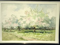 Three framed and glazed watercolours signed Diana M Snagge