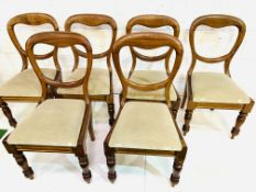 Set of six mahogany framed Victorian balloon back dining chairs, and 2 others