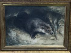 Oil on canvas of an otter and a pencil drawing of an otter, both signed John Edwards
