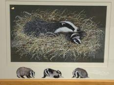Framed and glazed watercolour of badgers, signed J Ferguson