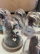 "Six ""Guardian of the Nest"" bird of prey figurines by Ronald Van Ruyckevelt"