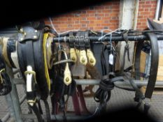 Set of working harness, collar size approx. 20ins x 9ins.