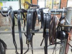 Complete set of leather harness to suit a cob but previously used on 14.2 to 15.3hh horses