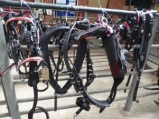 Set of black/red trade harness with white metal horseshoe fittings, 22ins collar - carries VAT