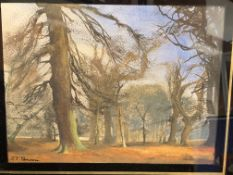 Framed and glazed watercolour of woodland signed F T Penson(?)