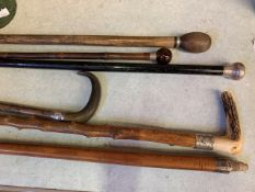 A number of silver mounted walking sticks