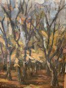 Four oils on canvas by Fiona Goldbacher