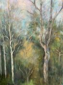 Two oils on canvas by Fiona Goldbacher