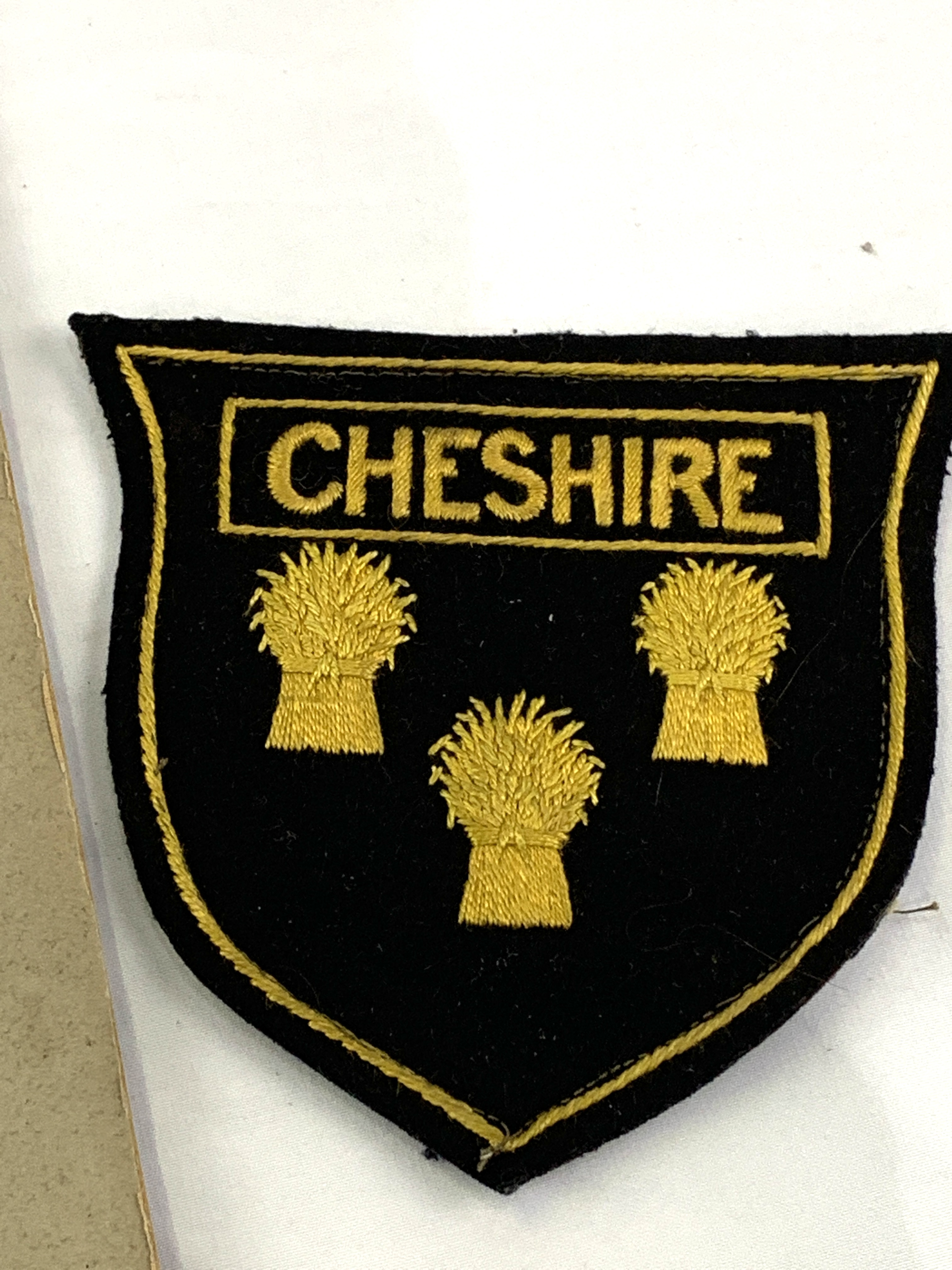 Black and white photograph of a Cheshire Rugby team circa 1895, a shirt badge and 2 velvet caps - Image 4 of 6