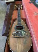 Strident 8-string mandolin
