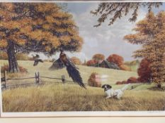 Four framed and glazed limited edition prints of birds, signed Ken Michaelsen