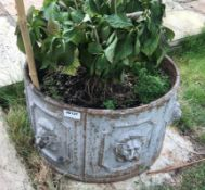 1 x Large Round Cast Iron Planter / Trough With Lion Heads Around The Circumference - Dimensions: