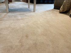 1 x Premium Bedroom Carpet - Dimensions: 570 x 445cm - Ref: SGV154 / PAR - CL672 - NO VAT ON THE