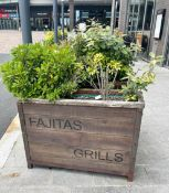 1 x Outdoor Wooden Planter With Live Plants - Size H90 x W121 x D41 cms- CL674 - Location: Telford,