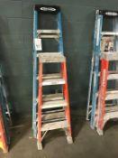 (2) Assorted Fiberglass Ladders