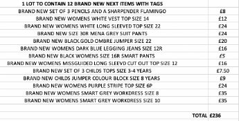 TOTAL RRP-£236.00 1 LOT TO CONTAIN 12 BRAND NEW NEXT ITEMS WITH TAGS (1015)Condition ReportAppraisal