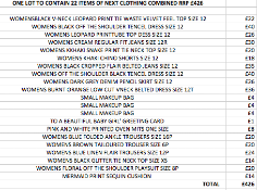 ONE LOT TO CONTAIN 22 ITEMS OF NEXT CLOTHING COMBINED RRP £426 (1051)Condition ReportALL ITEMS ARE