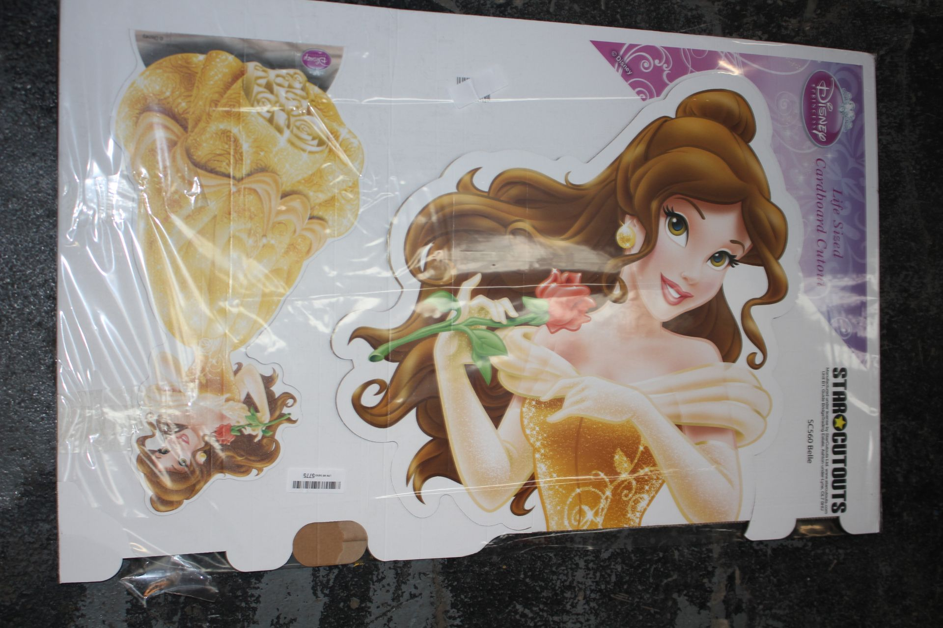 BAGGED DISNEY PRINCESS LIFESIZE STAR CUTOUTS Condition ReportAppraisal Available on Request- All