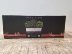 COLE & MASON BURWELL HERB POT RRP £33.99Condition ReportAppraisal Available on Request- All Items