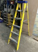 Werner Clow 6 Tread Step Ladder