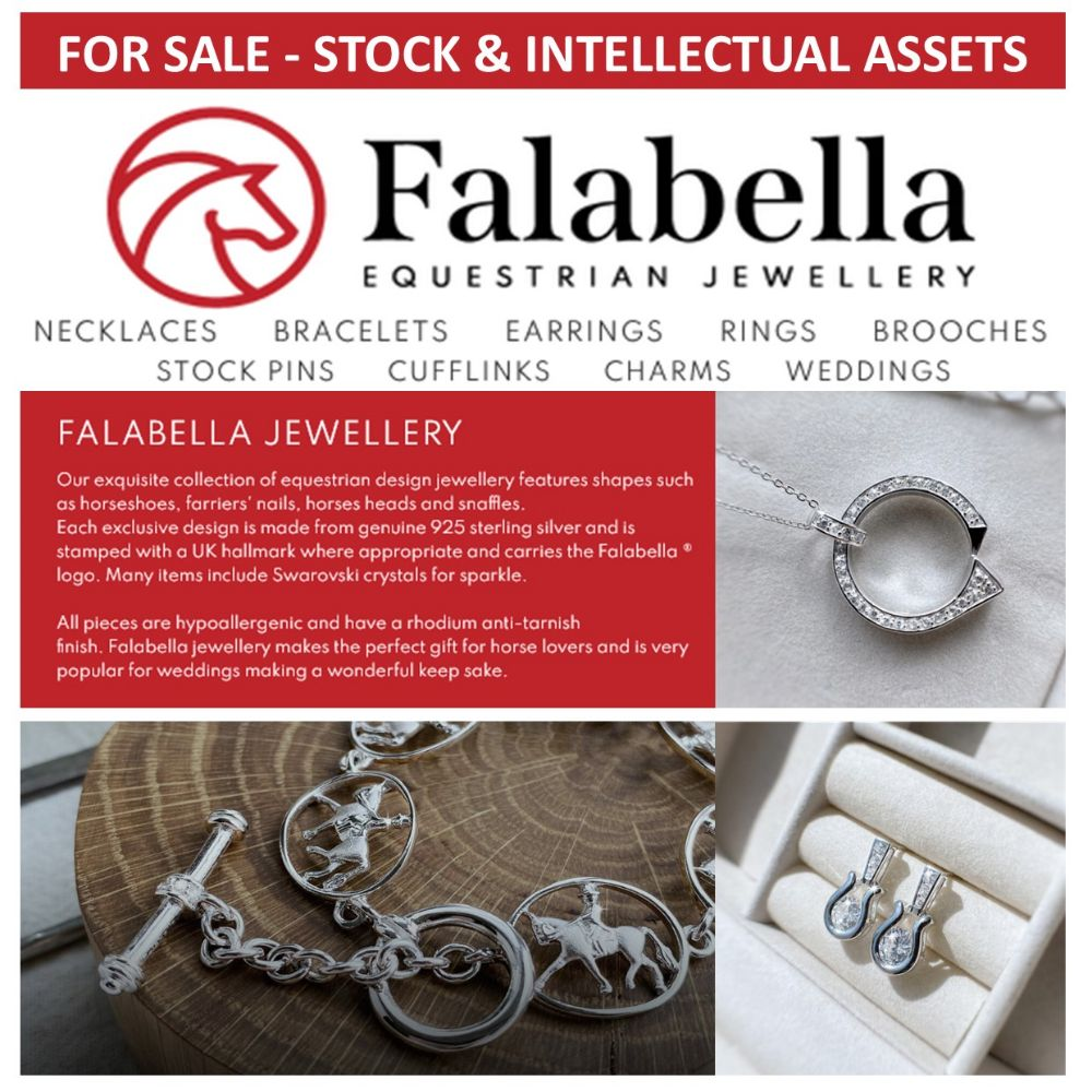 EQUINE BUSINESS OPPORTUNITY | Stock, Customer/Supplier List, Website/Domain Name of Falabella Silver Equine Jewellers - Stock Cost Price £63,038