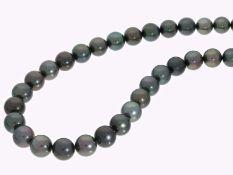 Kette/Collier: feiner Tahiti-Zuchtperlen-Strang mit sehr schönen Perlen, neuwertig und ungetragen