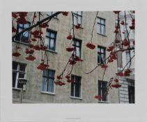 Stephen Wilks 1964 Bridgwater - Berlin Mitte 1999 - Farbfotografie. 32 x 40,5 cm, 40 x 48 cm.