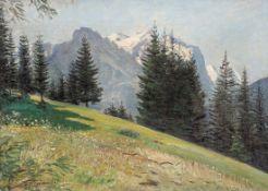 """Eugen Windmüller 1842 Marienwerder - 1927 Düsseldorf - """"Auf dem Hasliberg"""" - Öl/Lwd. 37 x"""