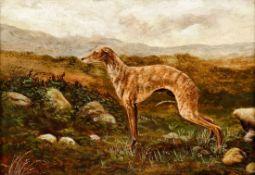 S. Thompson Künstler des 19. Jahrhunderts - Windhund - Öl/Karton. 25,2 x 35,2 cm. Sign. l.