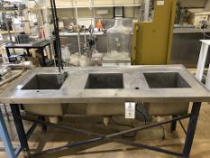 Stainless steel cleaning station with three cleaning tanks built into an all stainless counter top