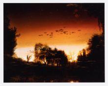 Elger Esser – Nocturnes à Giverny